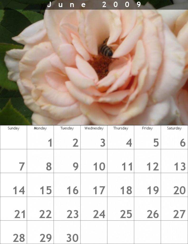 rose calendar June 2009